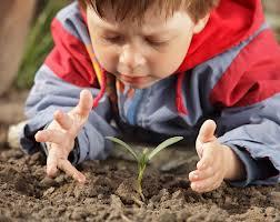 Aménagement paysager enfant